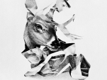 empedocles_untitled-deer